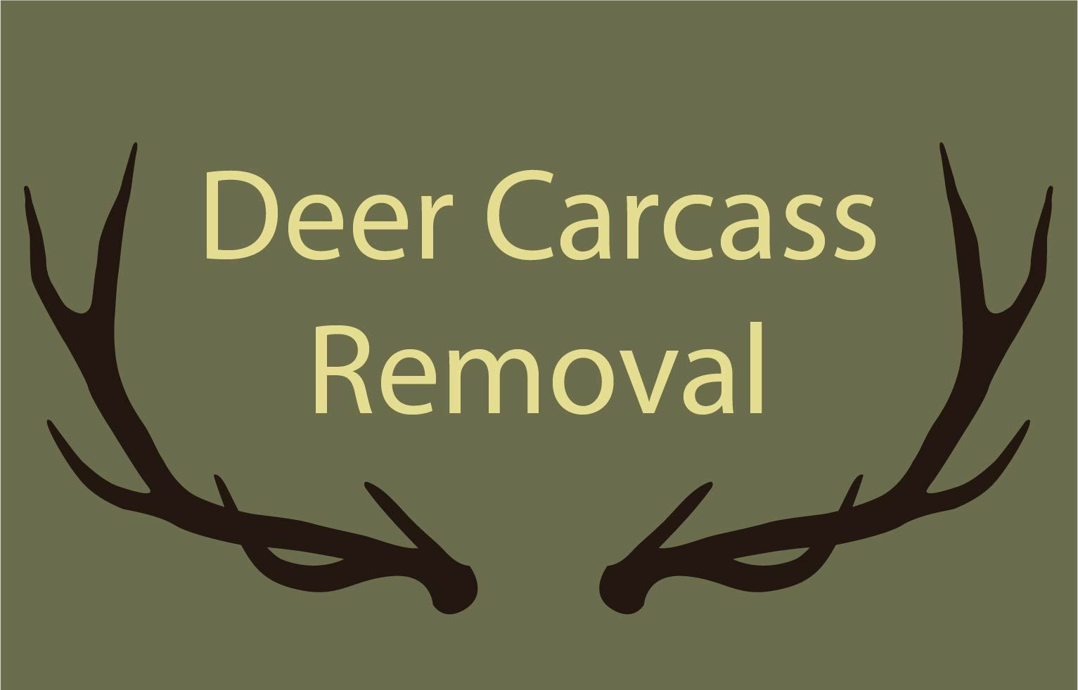 Deer Carcass Removal