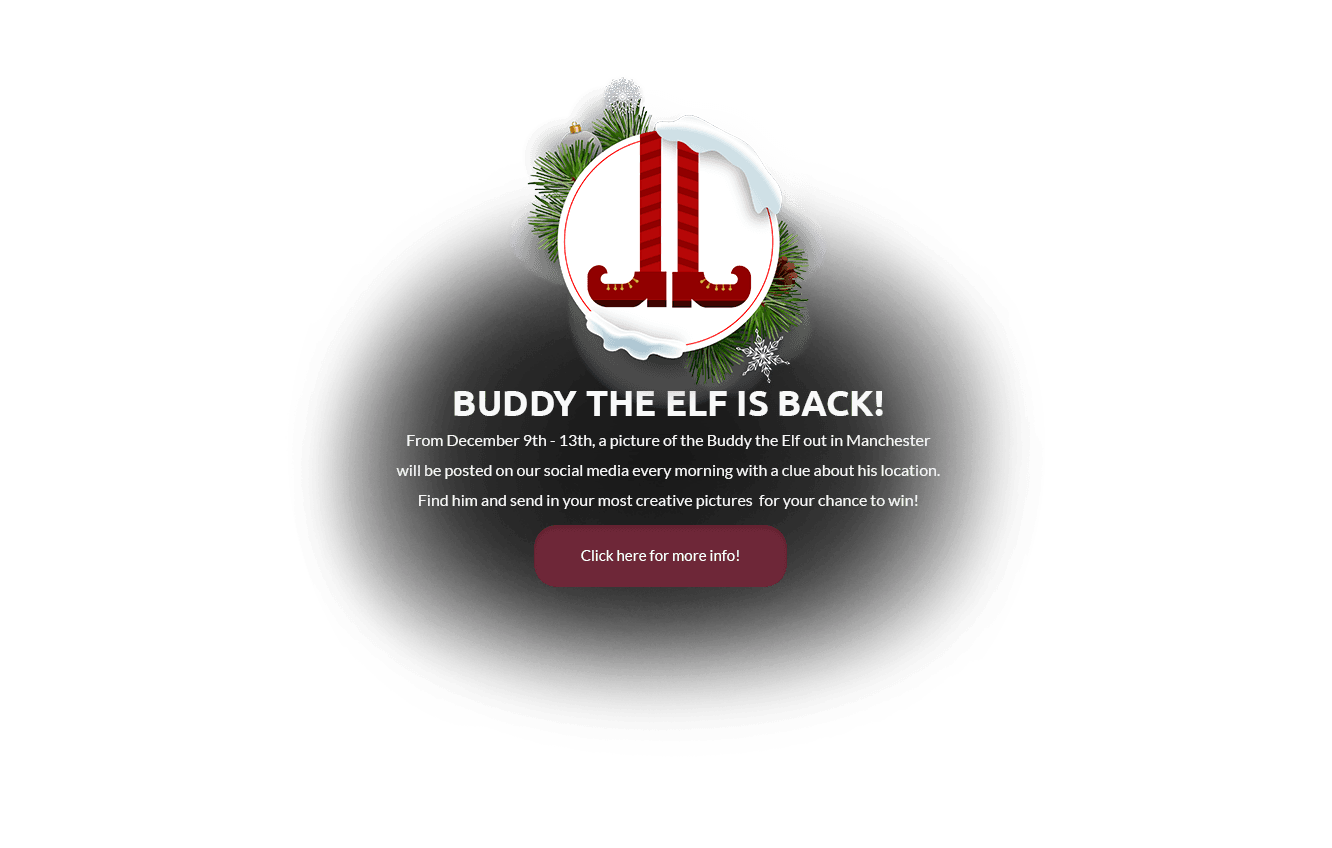 Buddy the Elf SL 2.0